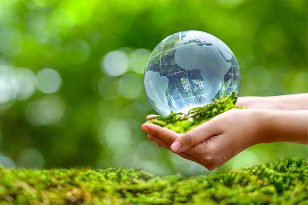 hands holding a clear glass world globe surrounded by green grass and blurred green trees